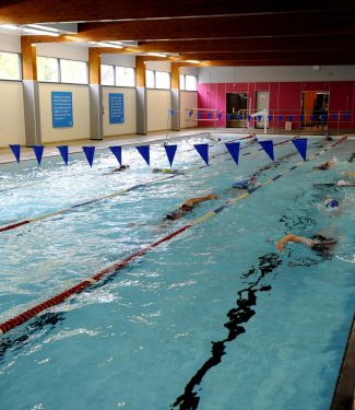Club Swimming Image