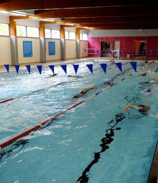 Club Swimming Image