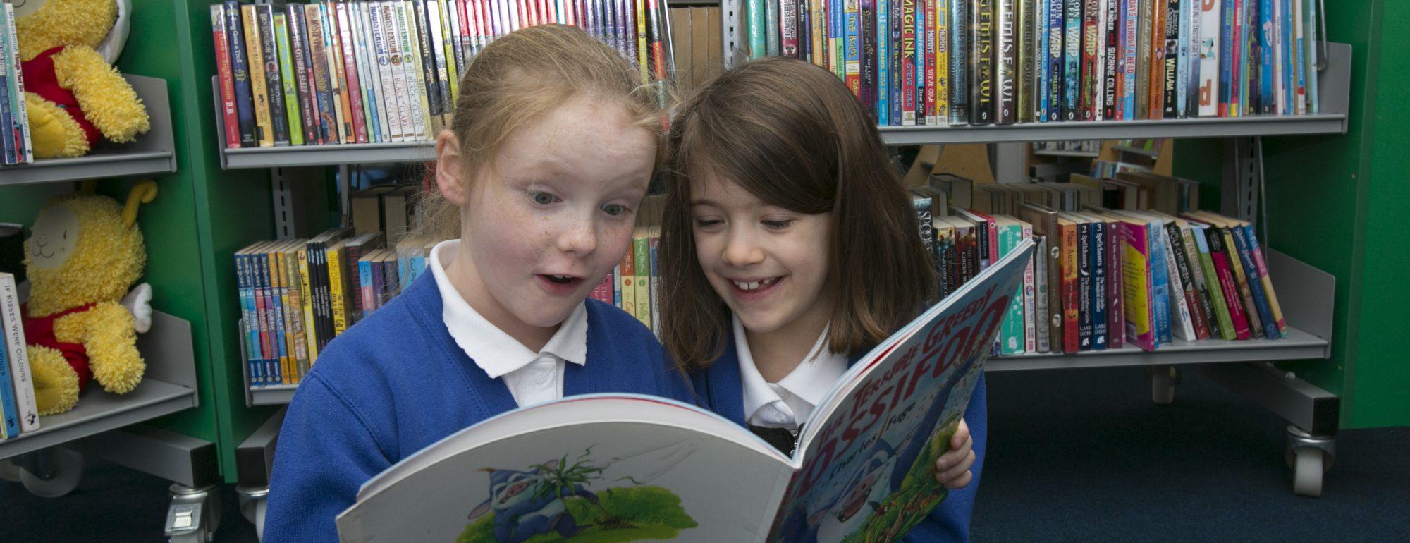 libraries-header