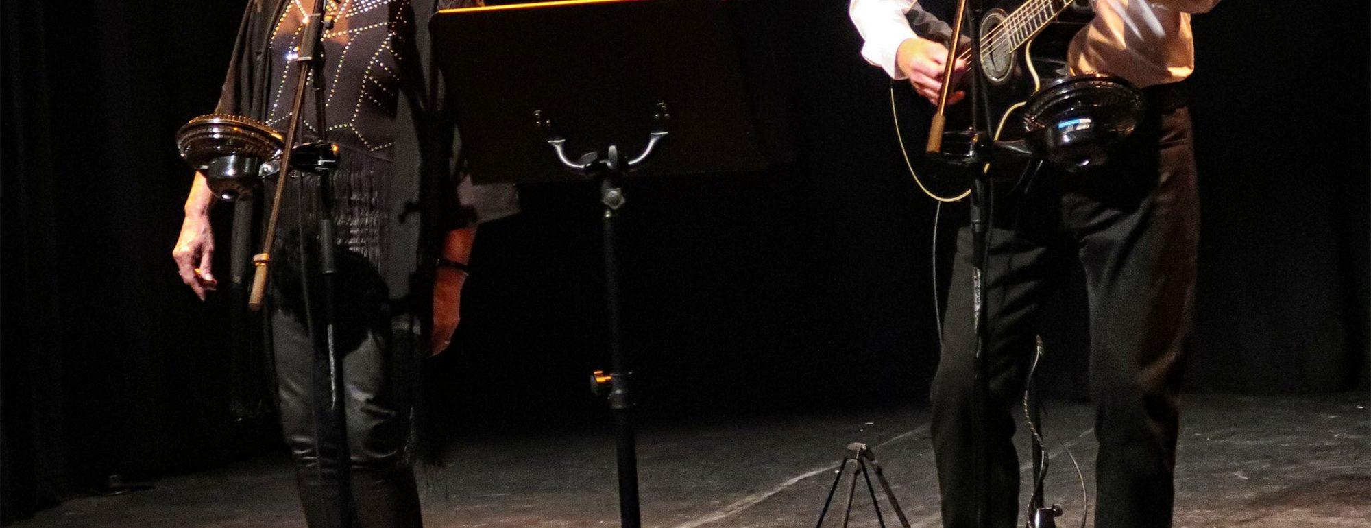 acoustic bowie